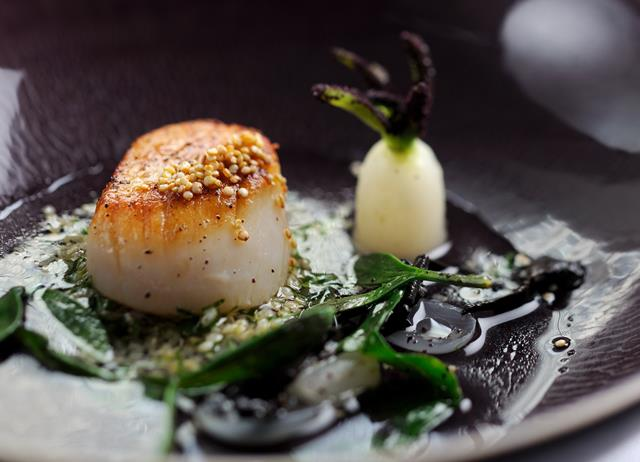 Scallop broth