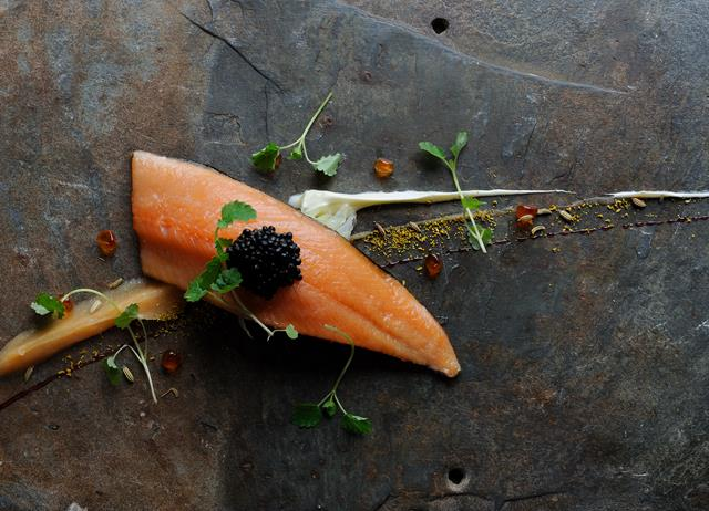 Cured salmon and wild fennel