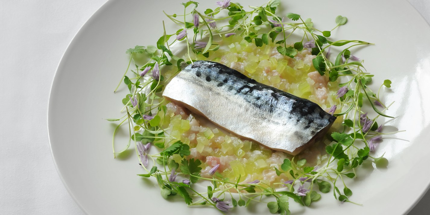 Mackerel confit, cucumber tartare and lemon sherbet dressing