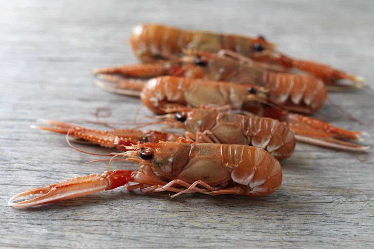 Mitch Tonks: the only four barbecue seafood recipes you'll ever ...