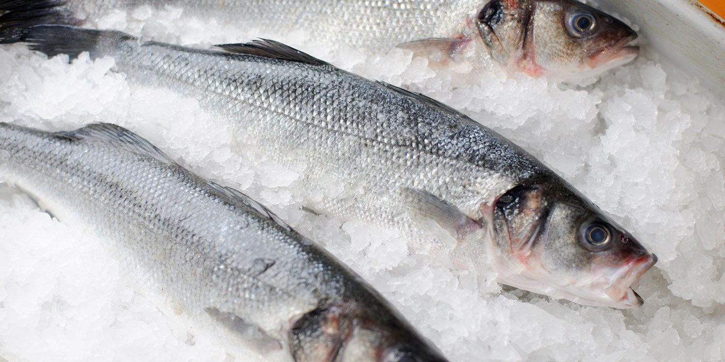 How to cook sea bass