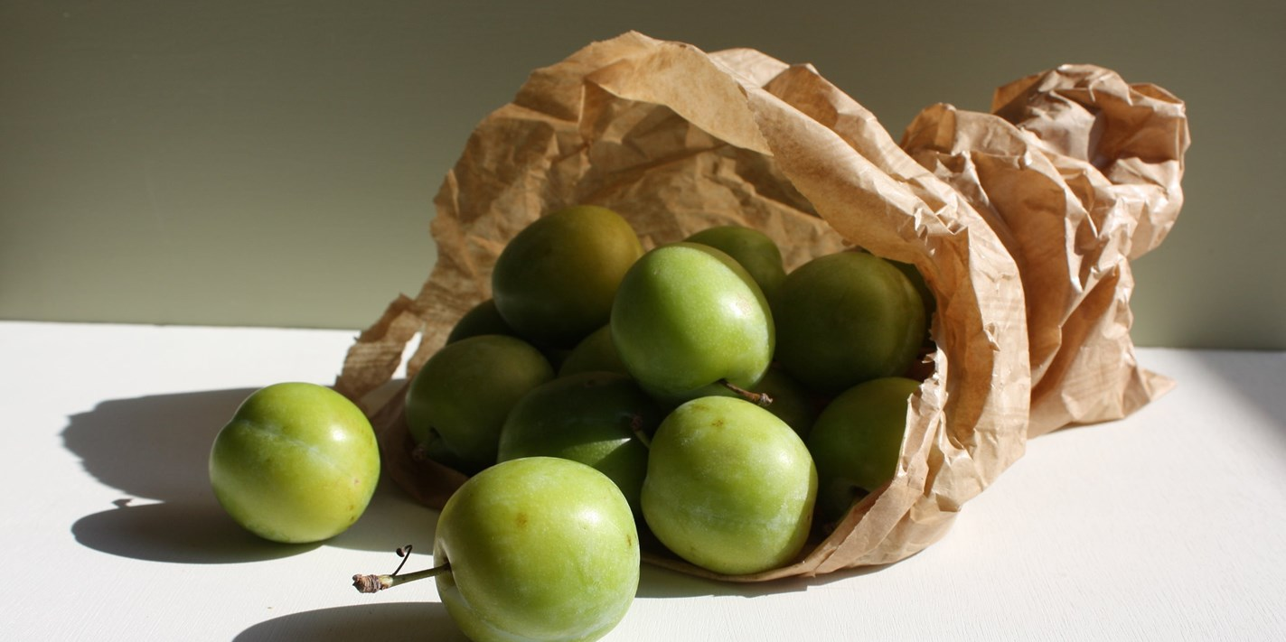 How to cook greengages