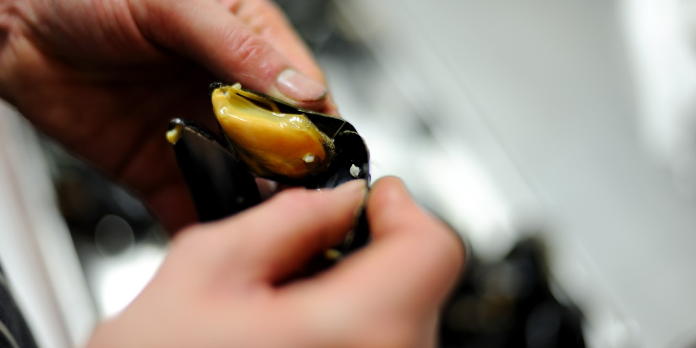 How to remove cooked mussels from their shells