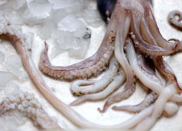 How to cook squid sous vide