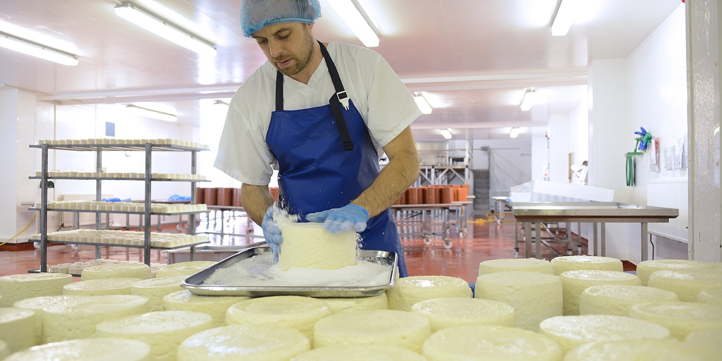 The heroes of British cheese