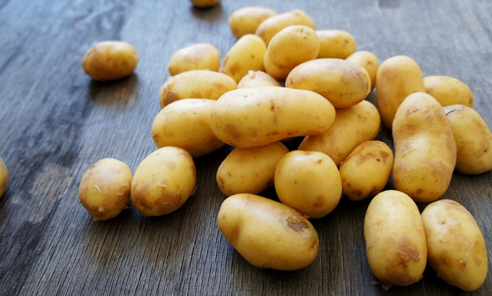 Pembrokeshire Early potatoes