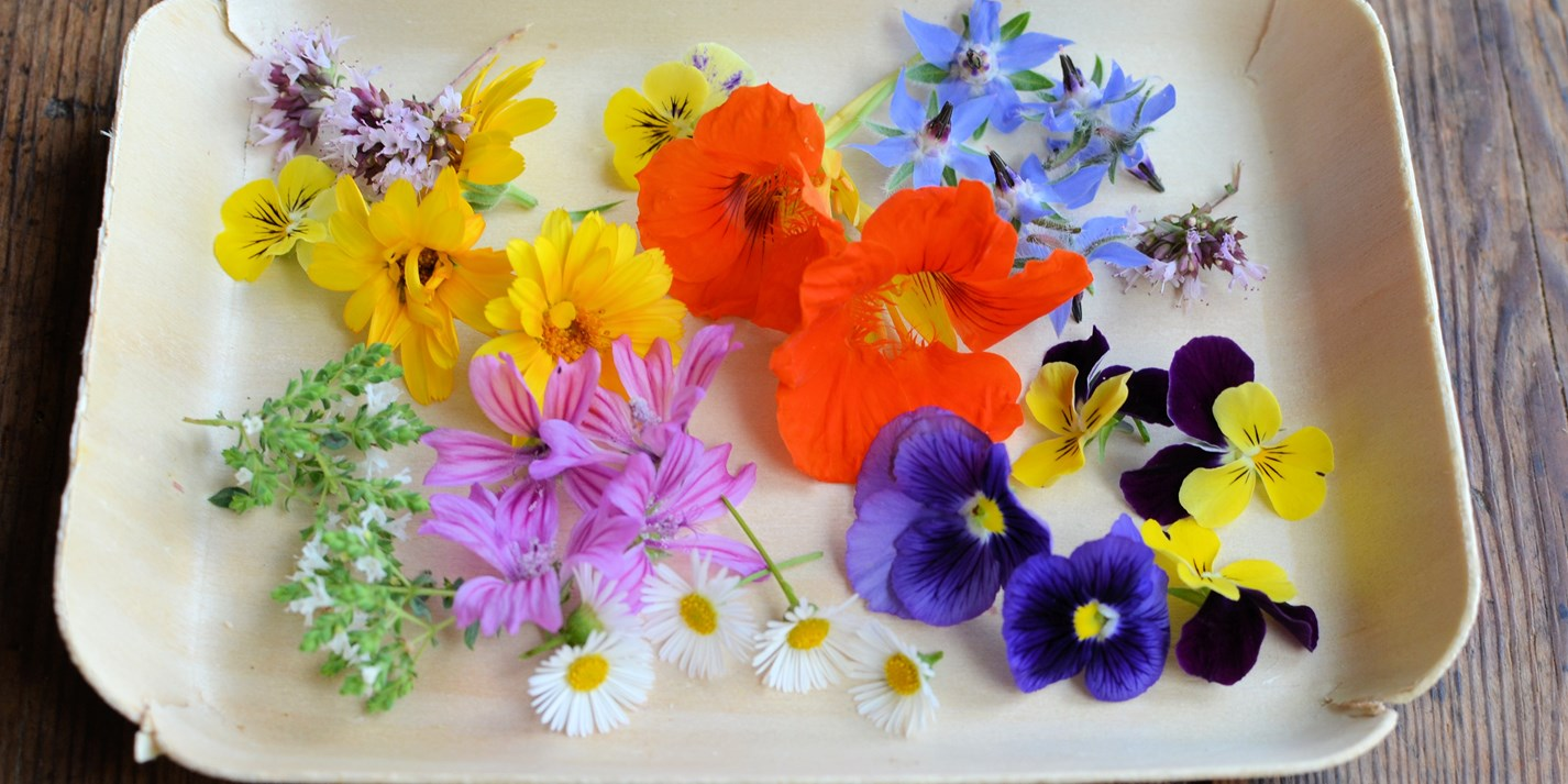 Edible Flower Recipes: Tulips, Roses and Herbs