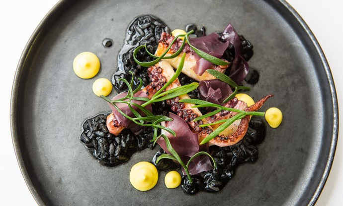 Octopus, 'black rice', saffron
