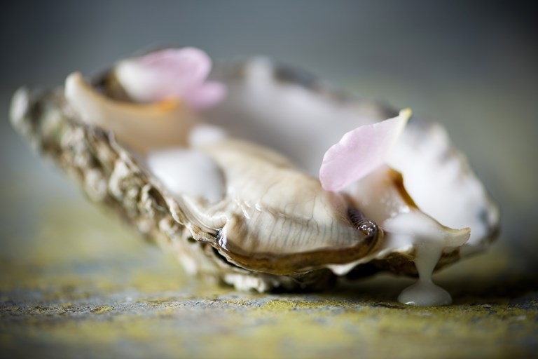 Oyster canap recipe with coconut and lychee great for Smoked oyster canape
