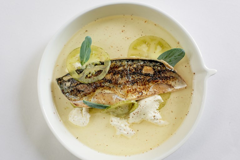 Mackerel with cinnamon spiced tomato water, burrata and pickled green tomatoes