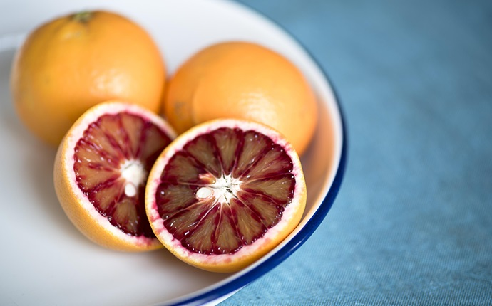 Blood orange recipes