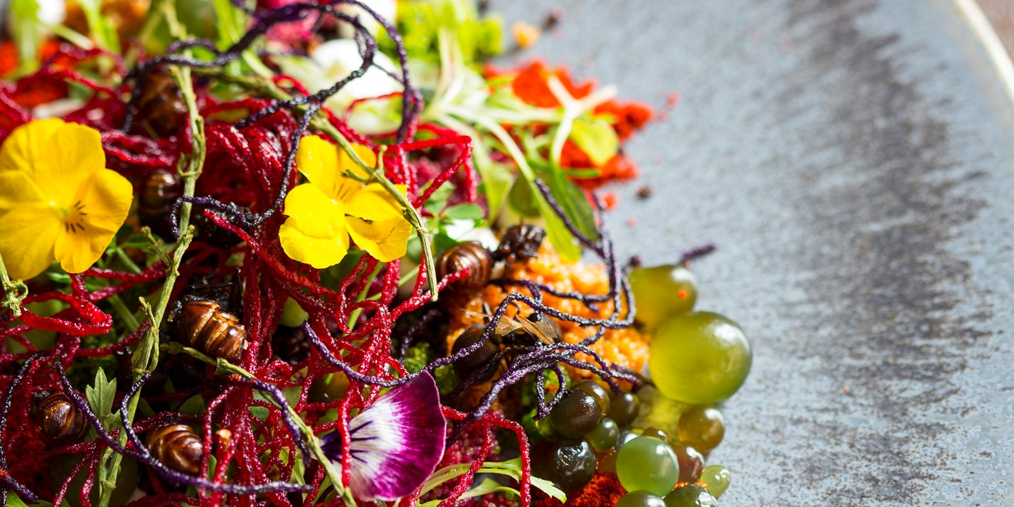The best of February on Great British Chefs