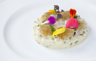 Risotto with oil, clams, thyme and lemon