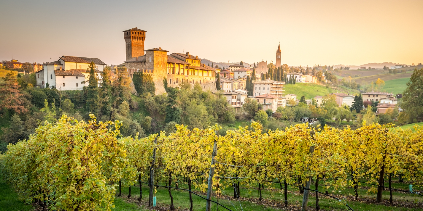 The wines of Emilia-Romagna