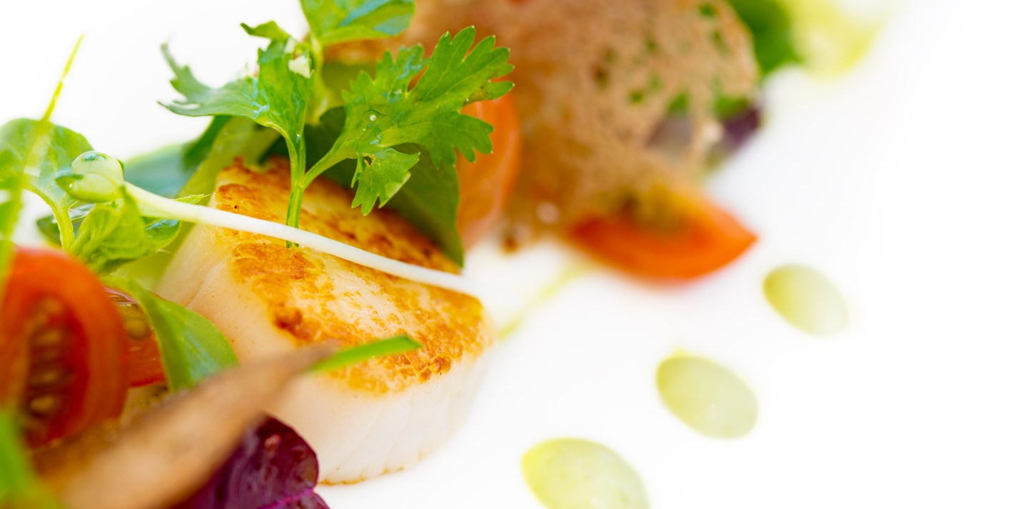 Scallop starter recipes