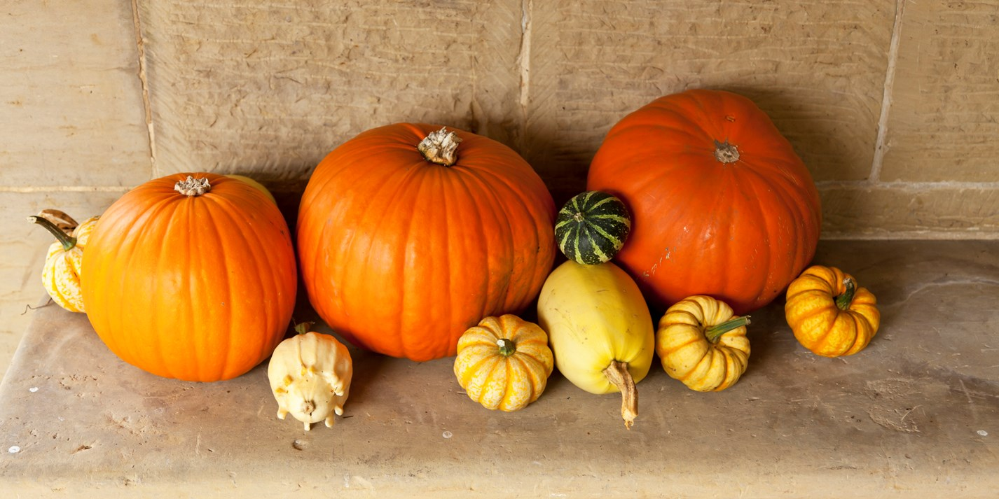 How to create a Halloween menu entirely out of pumpkin