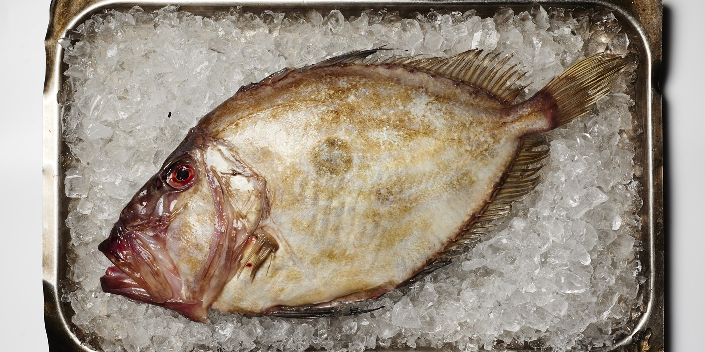 How to cook John Dory