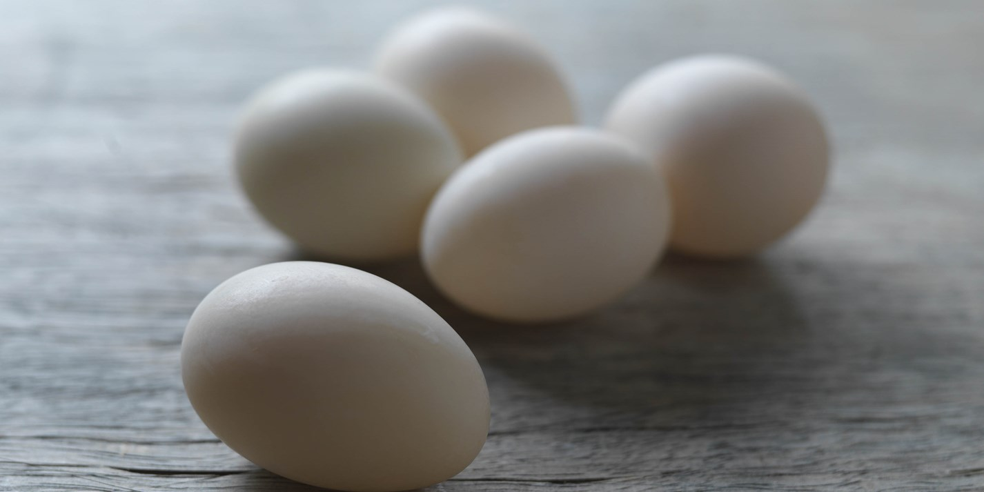 Duck egg recipes