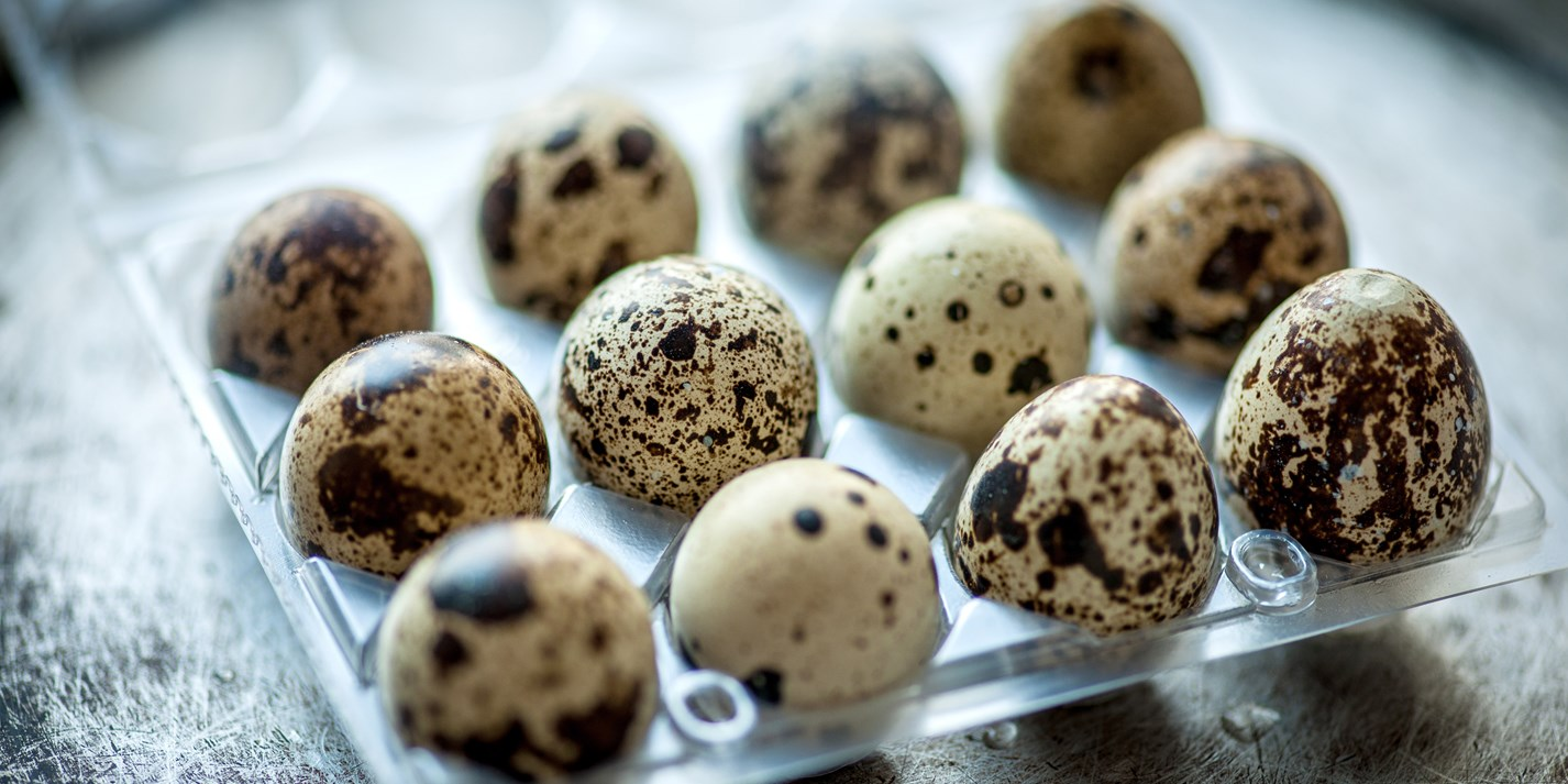 Quail egg recipes