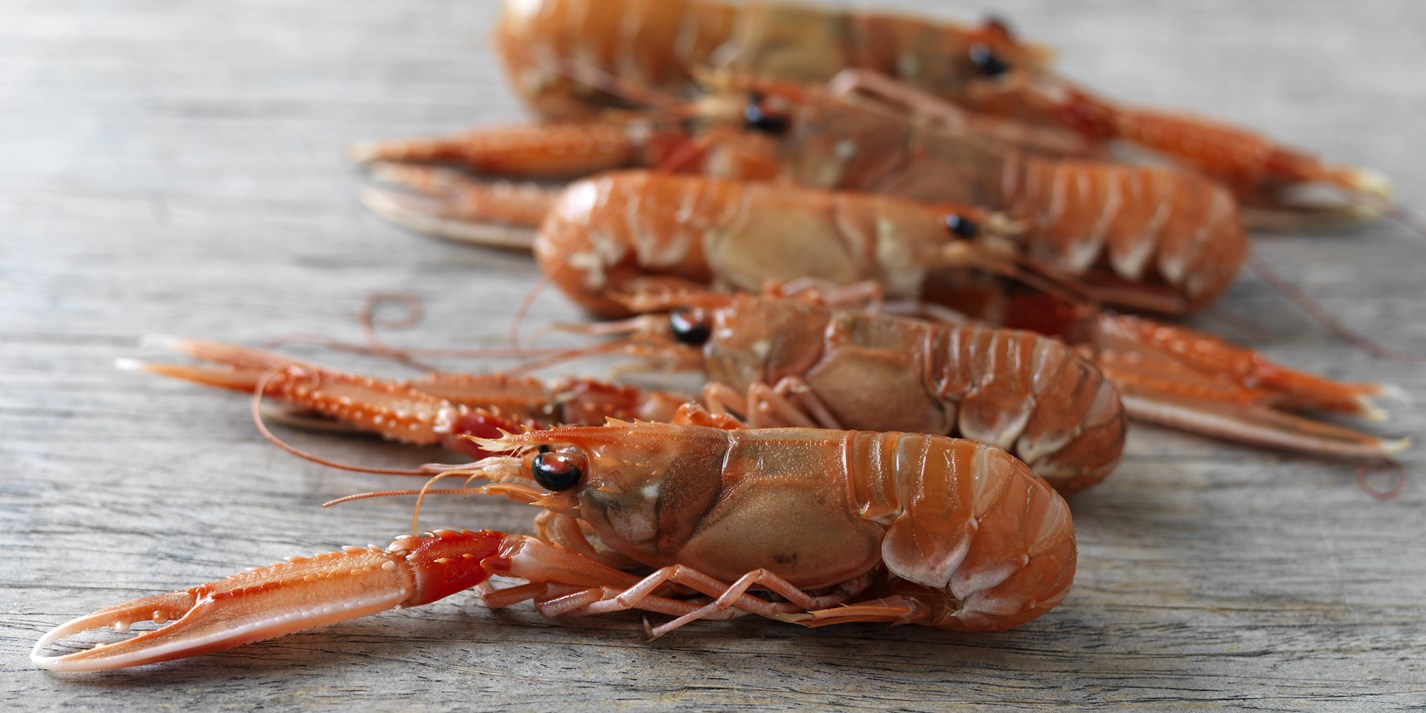 Langoustine Recipes Langoustine Tail Stews Great
