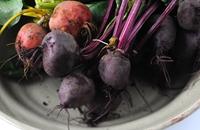 Beetroot recipes