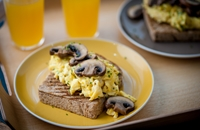 Mushrooms on toast with scrambled eggs and mushroom ketchup