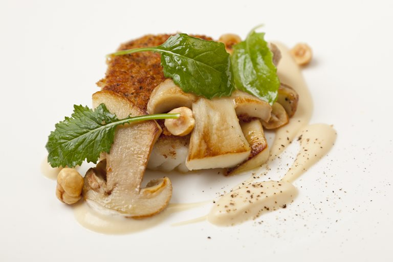 Hazelnut-crusted brill with sautéed ceps and Jerusalem artichoke purée