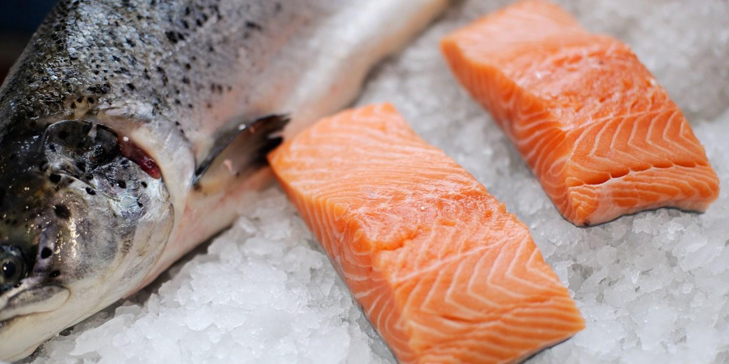 Salmon Recipes Salmon Fish Cakes Ceviche Great British Chefs
