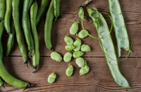 How to cook broad beans