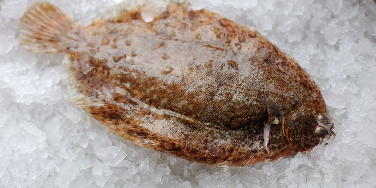 How to cook lemon sole sous vide