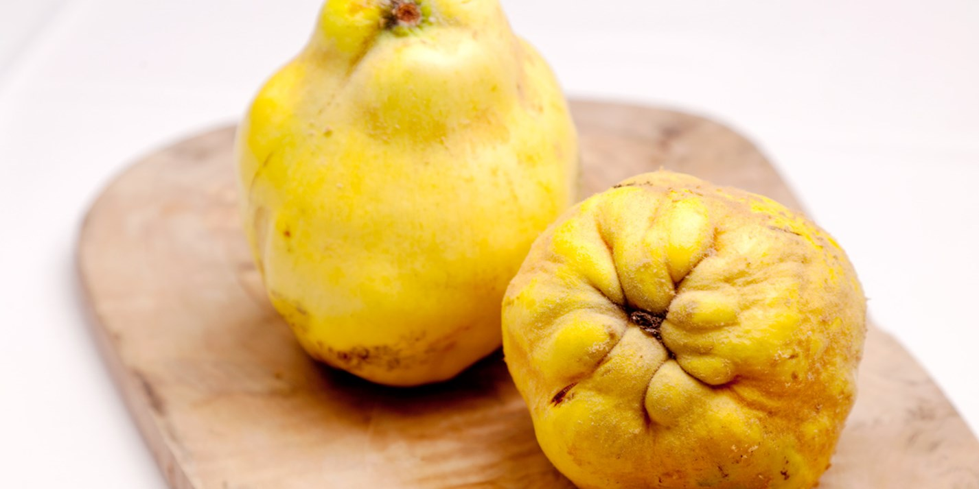 Ingredient focus – quince