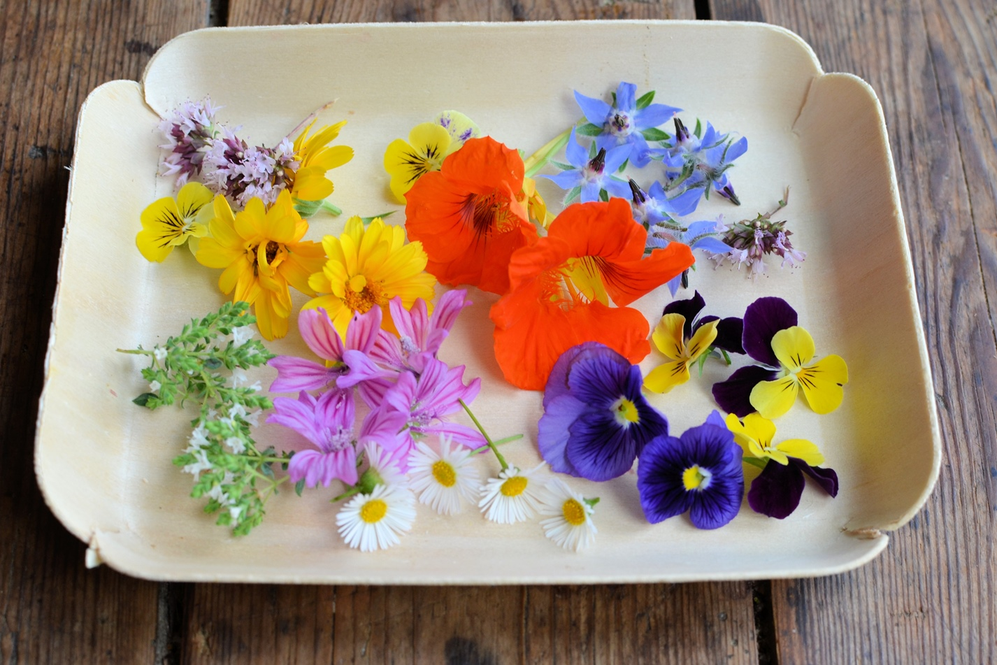 An Illustrated Guide To Edible Flowers Great British Chefs