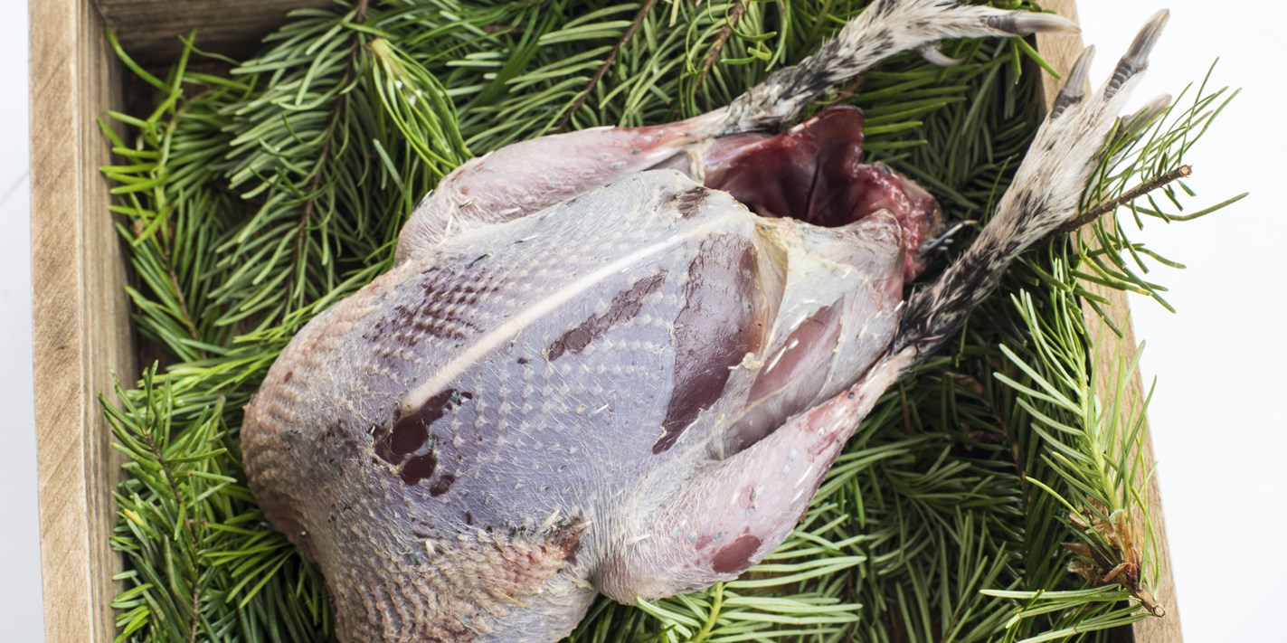 How to cook grouse