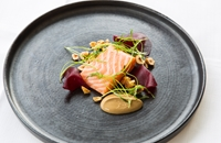 Salmon, treacle, beetroot and hazelnut