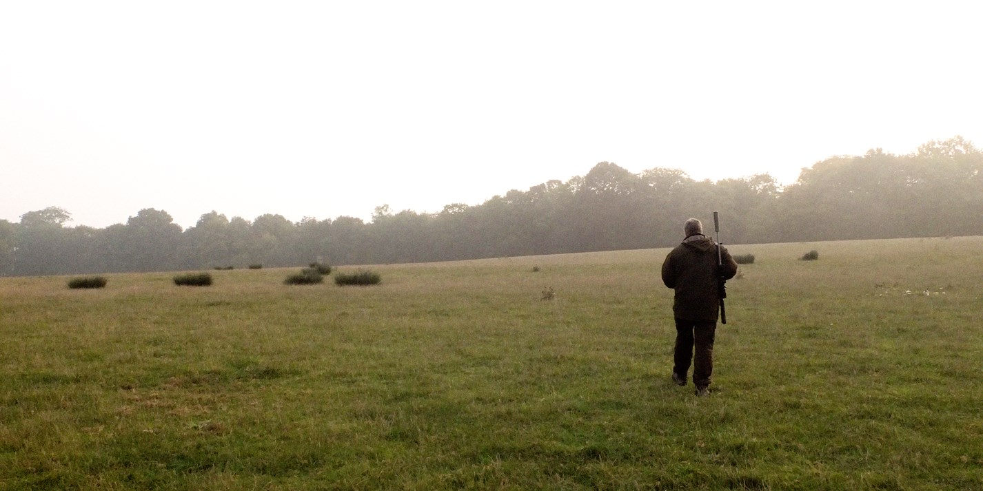 On the Hunt for Britain's Best Venison