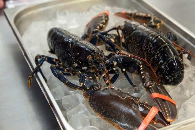 Lobster with Bisque and Broccoli Recipe - Great Italian Chefs