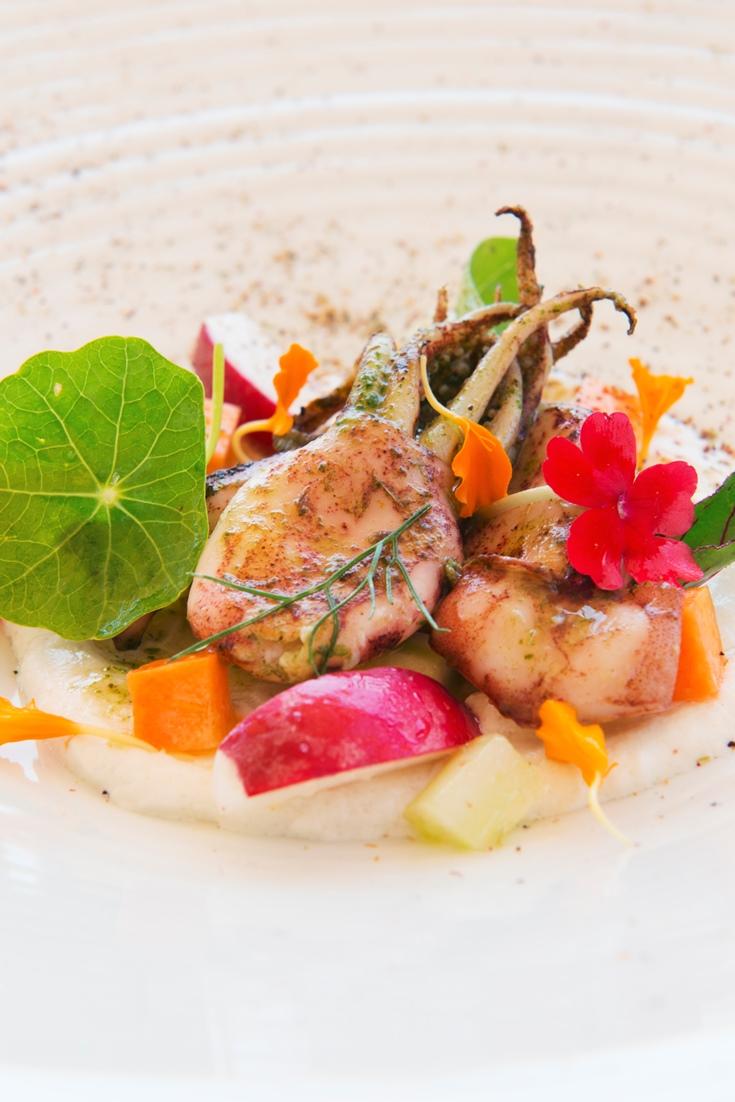 Grilled Squid Recipe with Ricotta Cream - Great Italian Chefs