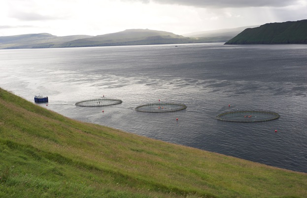 Salmon farms