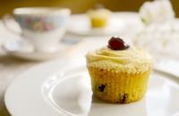 Gluten Free Amaretto Sour Cupcakes