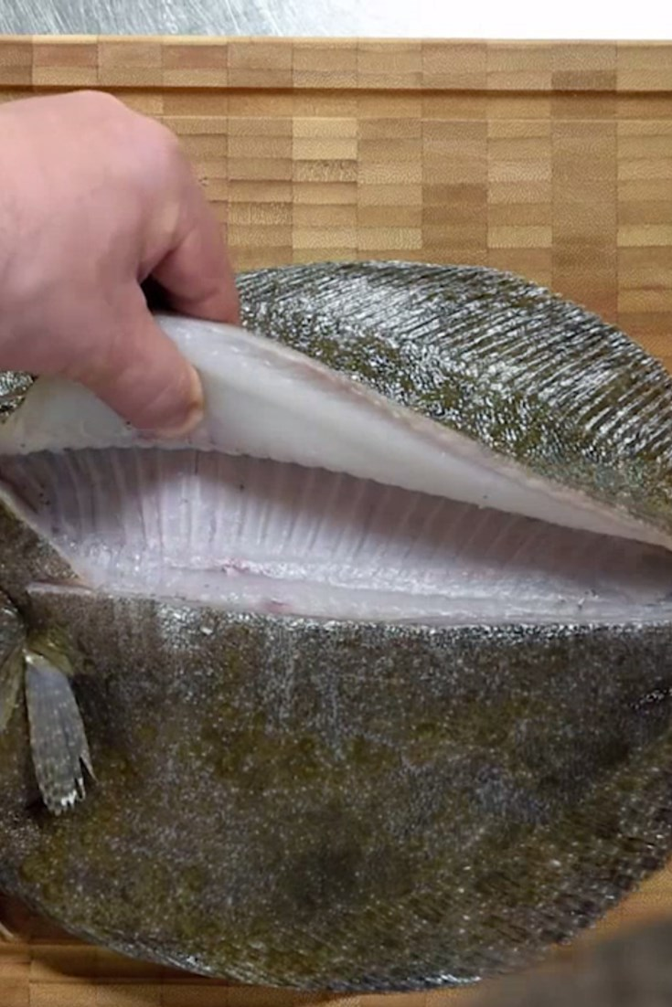 How To Fillet A Flat Fish Great British Chefs