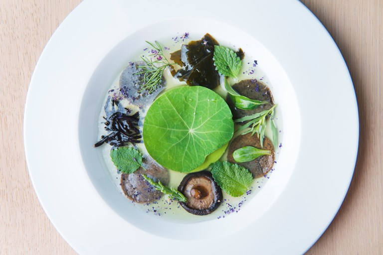 Yuzu gel recipe with pea cream great italian chefs image forumfinder Gallery