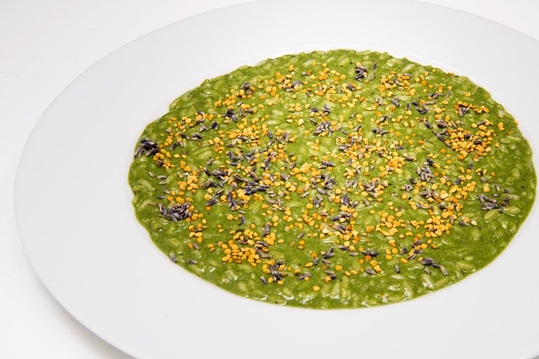 Nettle risotto, goat's cheese, pollen and lavender