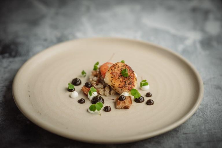 Simple Cooking Recipes Vegetarian