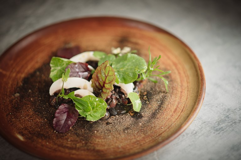 Venison tartare with walnut ketchup, pine oil and mushrooms