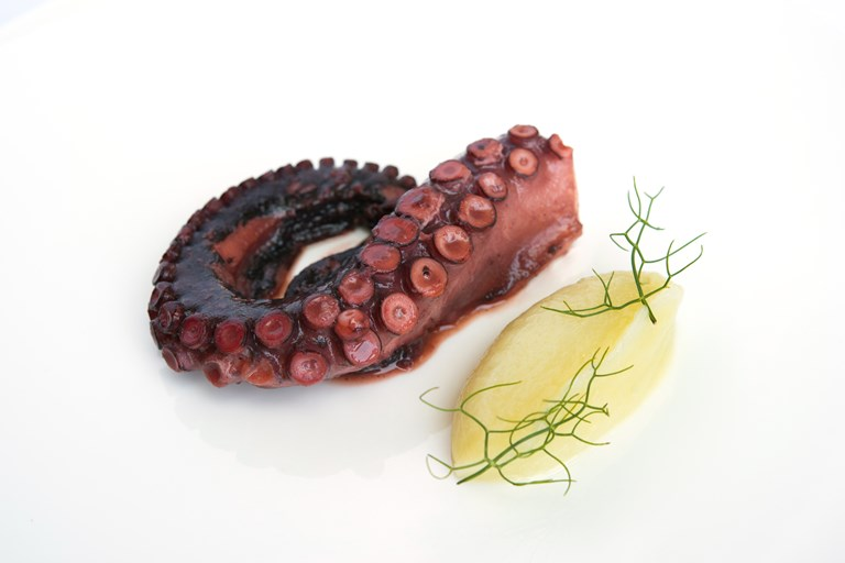 Octopus, pink grapefruit and fennel