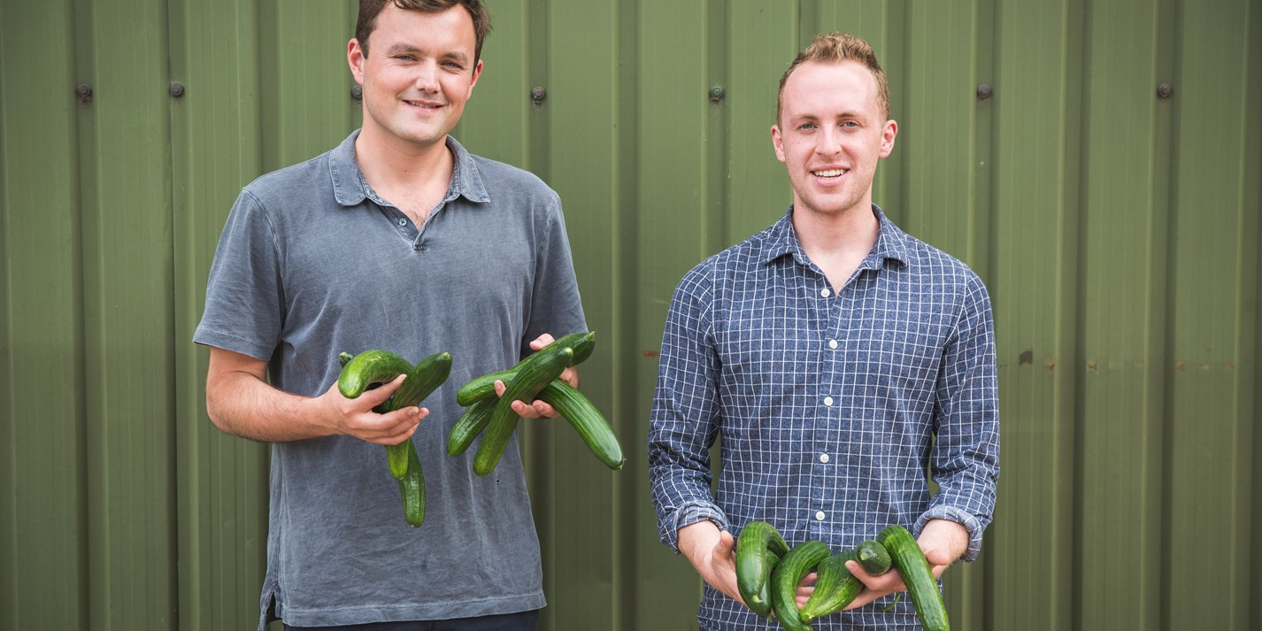 Dash Water: turning wonky veg into wonky water