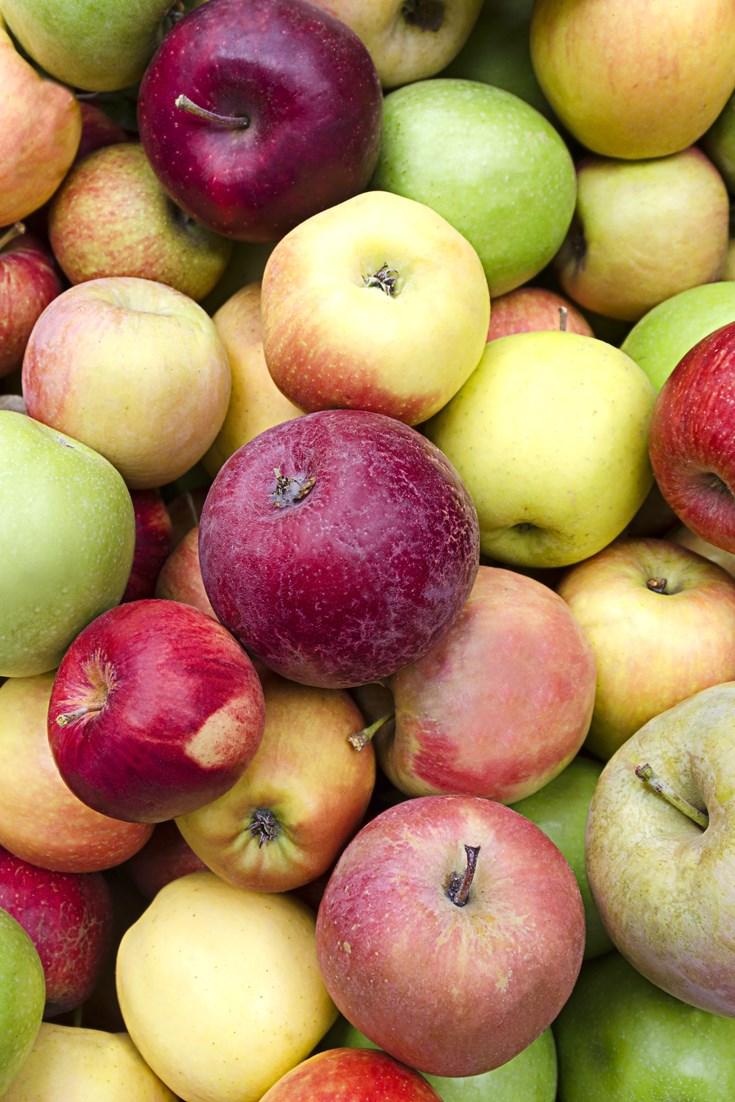 British Apple Varieties Great British Chefs