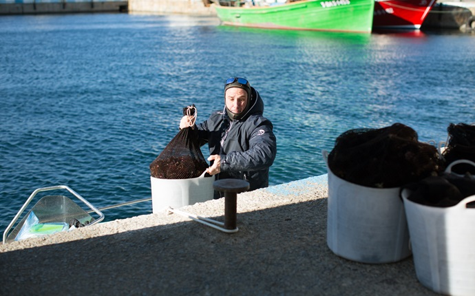 In pictures: fishing for sea urchins off the Catalonian coast