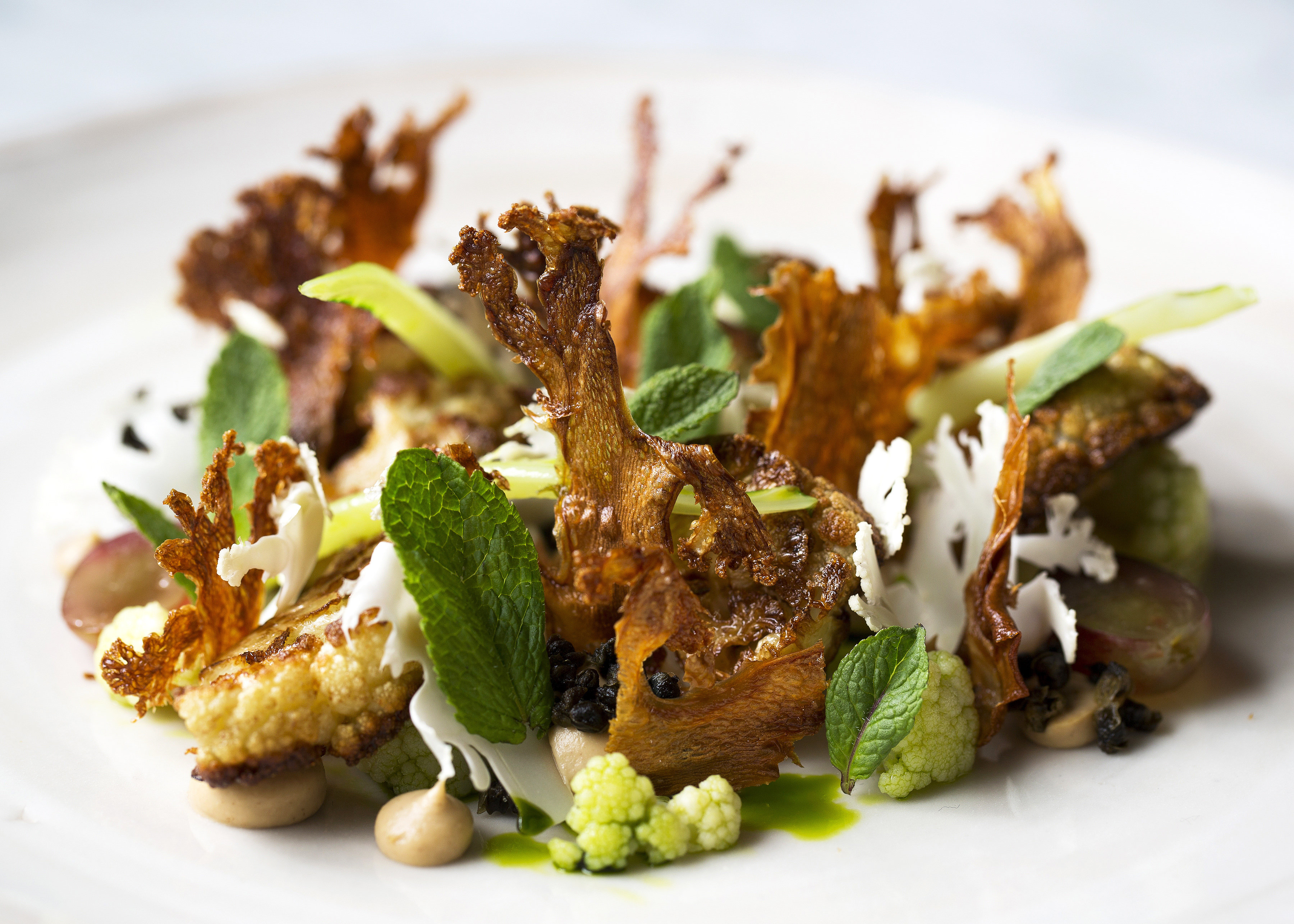 Vegetarian starter recipes great british chefs forumfinder Image collections