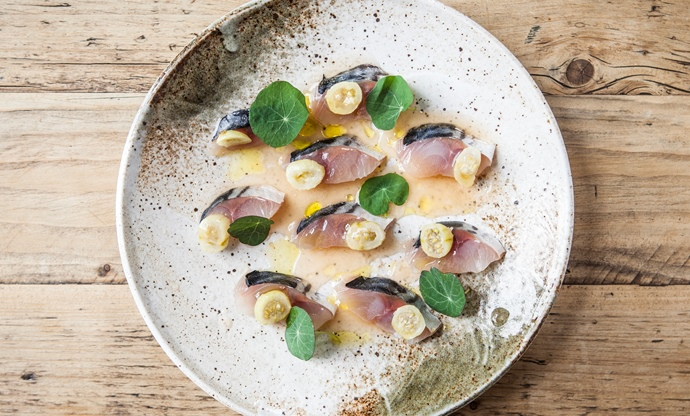 Cured mackerel, salted gooseberries, elderflower